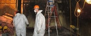 Water and Mold Damage Restoration Technician Working In Basement