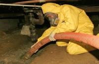 sewage cleanup ontario ca