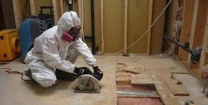 Water Damage La Verne Mold Removal Process