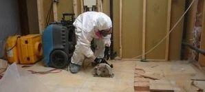 Water Damage Ontario Technician Opening Floor Boards